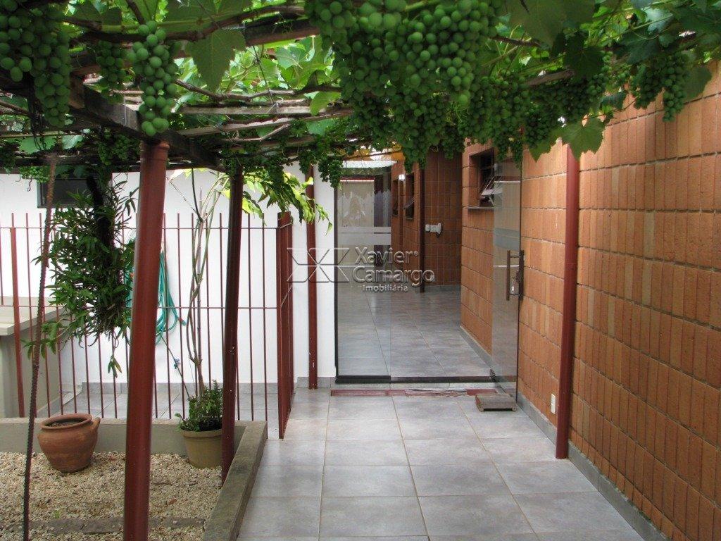 Plantação de uvas/Canil